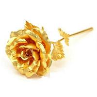 فروش ویژه شاخه گل رز طلای نانو