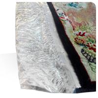 فروش ویژه کاور نایلونی ریشه فرش